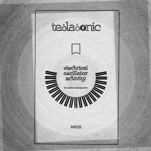 MR333-Teslasonic-digital
